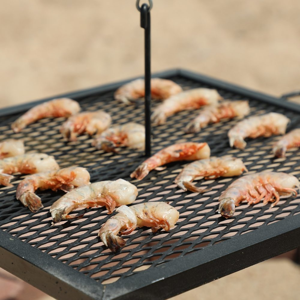 swing grill